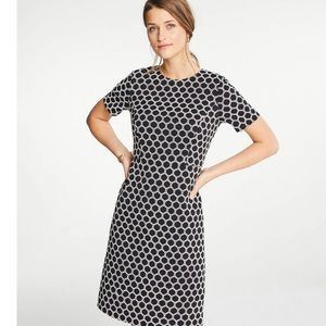 Ann Taylor Textured Polka Dot Shift Dress